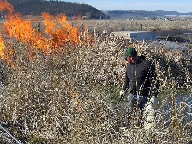 PHOTO COURTESY OF RON HALVORSON  - City Wetlands Technician Jason Wood conducts some burning, which is a proven management tool for wetland and other plant communities.