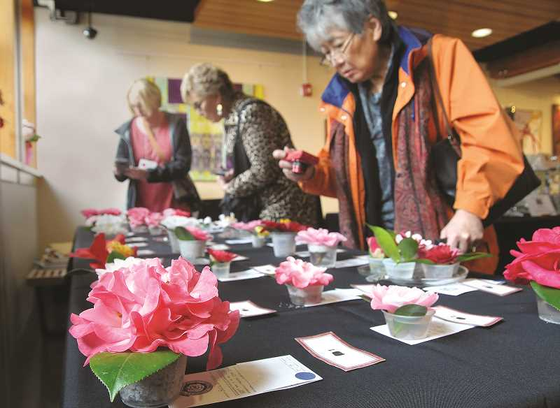 GRAPHIC FILE PHOTO - The annual Newberg Camellia Festival at the Chehalem Cultural Center drew thousands to witness such events as the bloom contest (above) and a variety of musical acts, most centered on Japanese traditions.