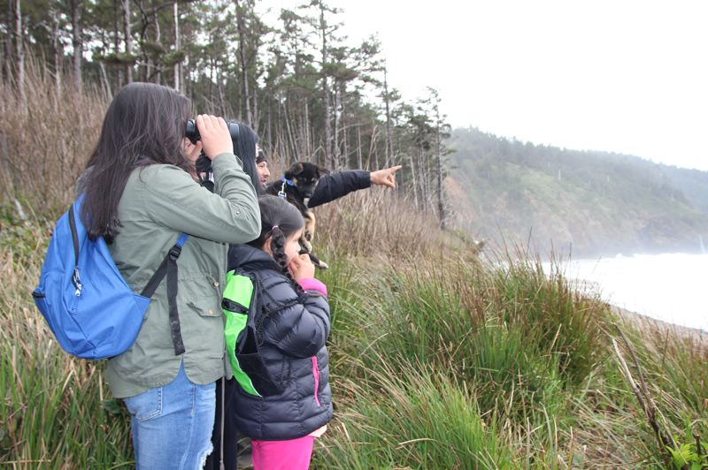 COURTESY PHOTO - People are still welcome to head to the Oregon Coast for Whale Watching Week, March 21-29, but there won't be volunteers available to assist. And, Depoe Bay Whale Watching Center will be closed. Oregon State Parks are committed to keeping parks open.