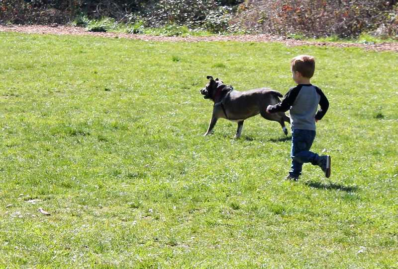 PMG PHOTO: HOLLY BARTHOLOMEW - A young boy runs around Mary S. Young park with his dog Friday, March 20.