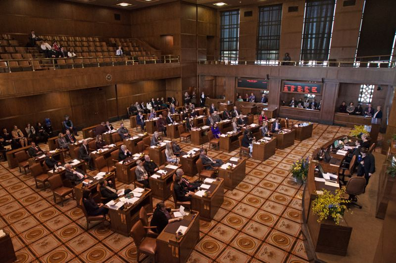 PMG PHOTO: JAIME VALDEZ - The floor of the Oregon Senate earlier this year.