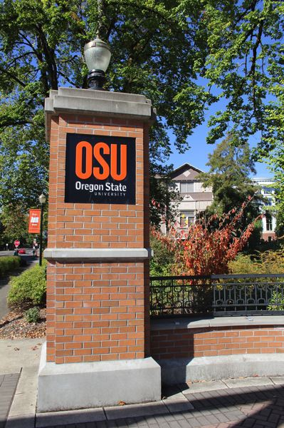 COURTESY PHOTO: OSU - A new OSU online class could help people cope with the stress of the COVID-19 pandemic.