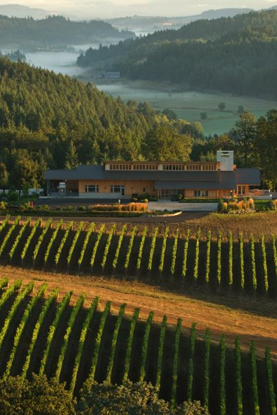 COURTESY PHOTO: ANDREA JOHNSON PHOTOGRAPHY - Wineries in the Willamette Valley, including Penner-Ash Wine Cellars, can soon tune in to All Classical Portland.