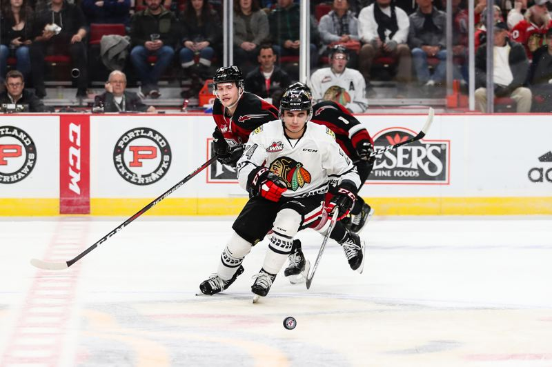 COURTESY PHOTO: PORTLAND WINTERHAWKS/KEITH DWIGGINS - Seth Jarvis of the Portland Winterhawks races to the puck against the Vancouver Giants.