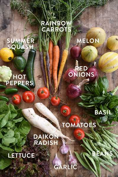 COURTESY PHOTO: BLOOMING JUNCTION - Community Supported Agriculture program members pay for their share at the beginning of the season and then receive a produce box every week throughout the summer and fall.