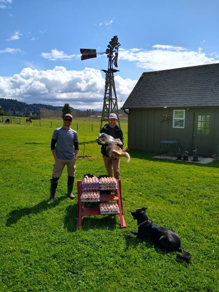 COURTESY PHOTO - Kells Irish Pub is delivering eggs to the Oregon Food Bank from its family farm in Wilsonville.