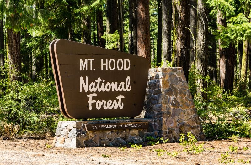 COURTESY PHOTO - Leaders on the Mt. Hood National Forest have anounced that firewood cutting will be free throigh the start of June.