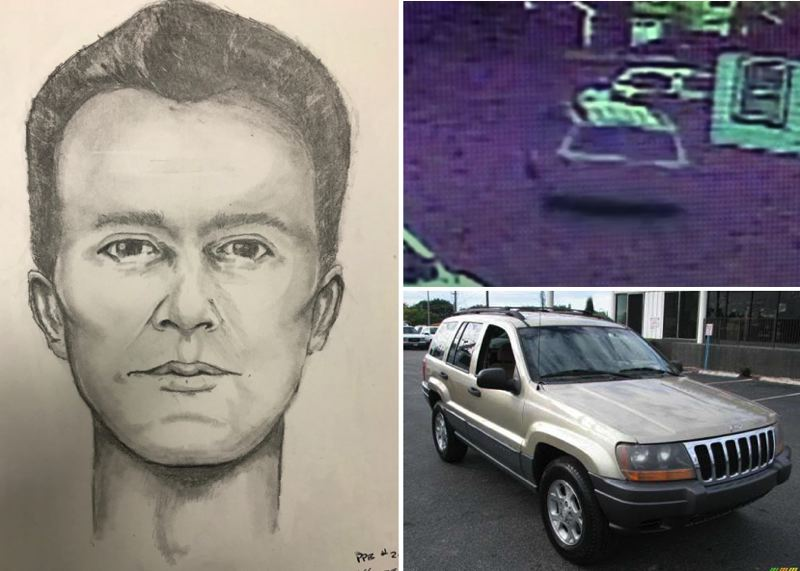 VIA PPB - A composite sketch and a similar car to the one stolen, which is shown in grainy surveillance footage at top right.
