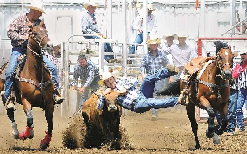 NEWBERG GRAPHIC FILE PHOTO - The chutes in the arena at the St. Paul Rodeo will be quiet this summer after it was announced Friday that what is billed as the nation's largest Fourth of July rodeo was canceled due to the COVID-19 pandemic.