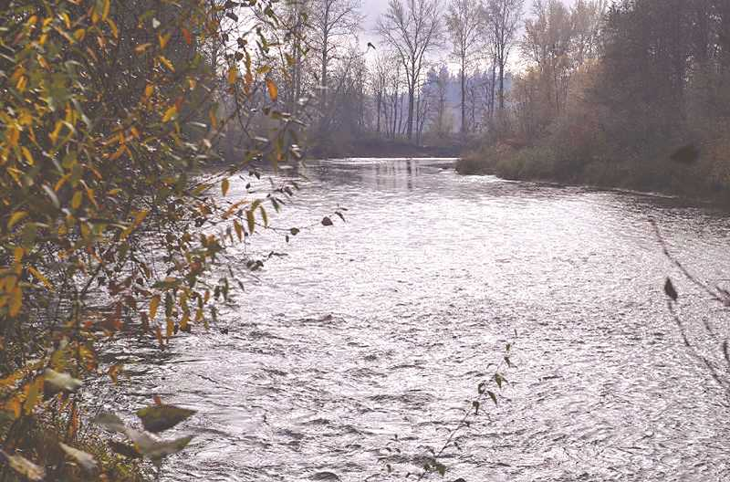 FILE PHOTO - What impacts the drinking water quality of the Molalla River for the communities that depend on it? Information and questions about the issue will be part of the May 13 online streaming presentation event.