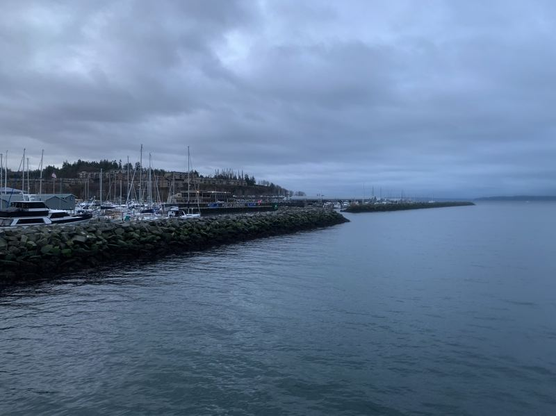 COURTESY PHOTO: LUKE OVGARD - The Edmonds Public Fishing Pier provides a variety of habitat, including the rocky footprint of the breakwater, pictured here.
