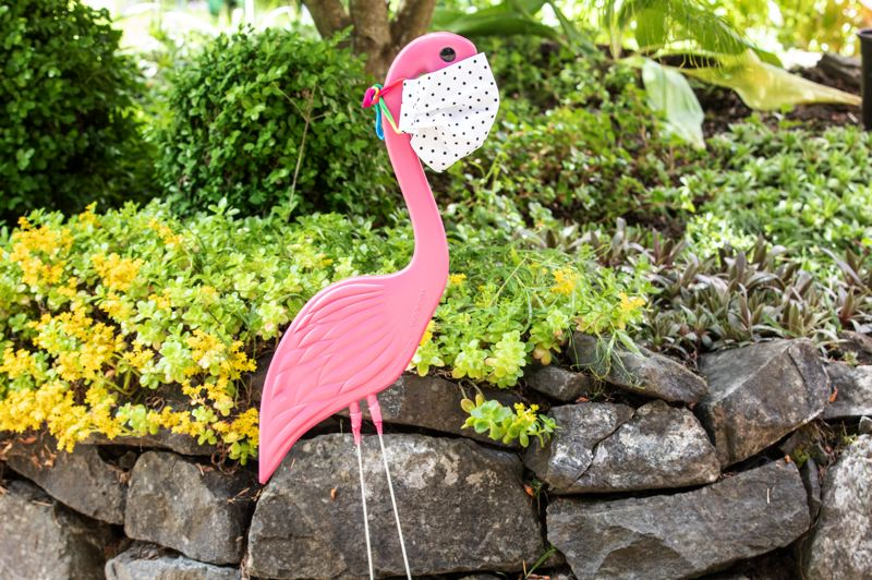 PMG PHOTO: JONATHAN HOUSE - A flamingo with a mask adorns the front yard of the Daniels' home, in anticipation of next weekend's Rose Festival Porch Parade.