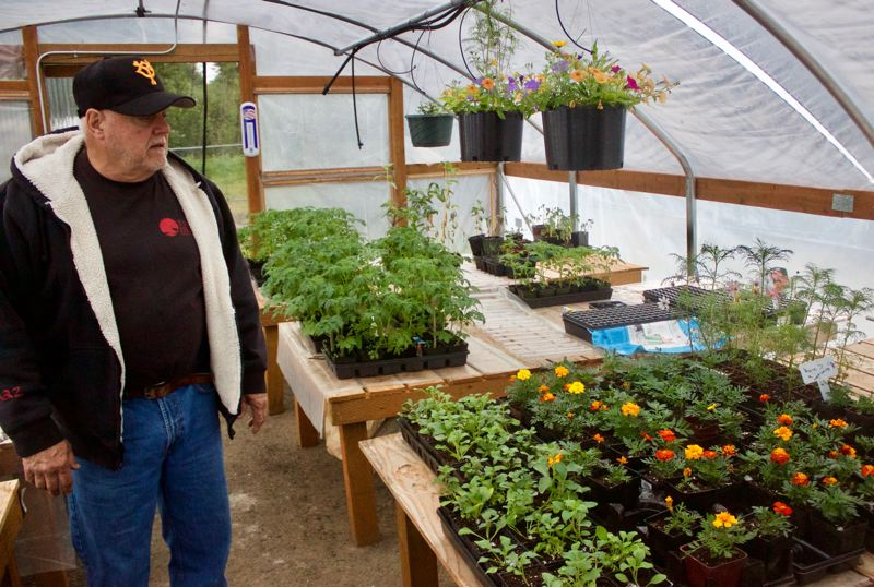 PMG PHOTO: CHRISTOPHER KEIZUR - Jim Card, director of the Gresham Japanese Garden, shows off some of the plants in the new greenhouse.