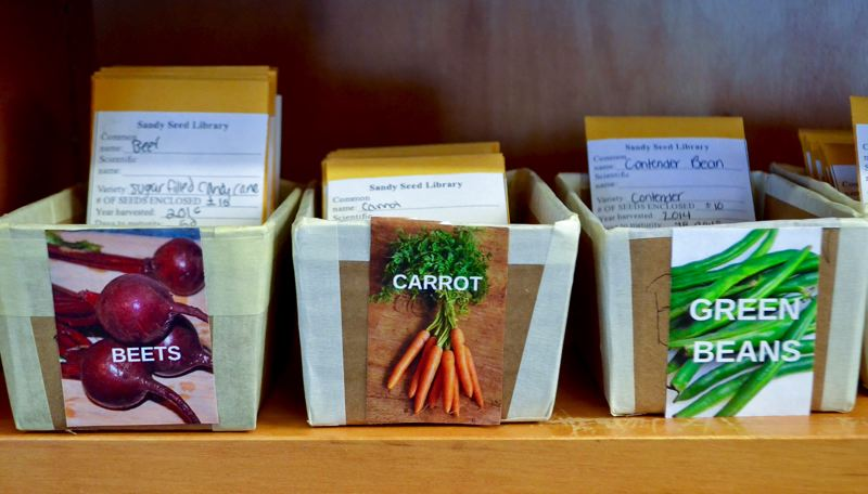 PMG FILE PHOTO - Seeds can now by ordered and picked up curbside at the Sandy Public Library.