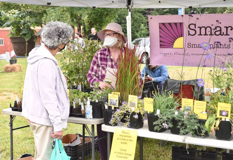 PMG PHOTO: BRITTANY ALLEN  - Vendors and customers alike smiled at each other from behind masks while enjoying the opening day of the outdoor Mount Hood Farmers Market season on June 5.