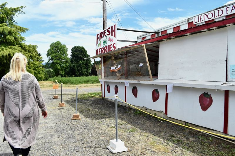 PMG PHOTO: BRITTANY ALLEN - The Liepold Farms berry stand now features a plexiglass shield and other precautions to allow people to buy berries while staying safe.