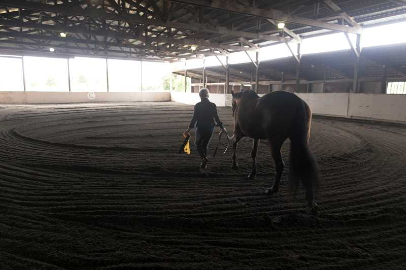 PMG PHOTO: JAIME VALDEZ - Carol McGilvra prepares her horse, Hanna, for a walk at Wildflower Trace Stable in Forest Grove.