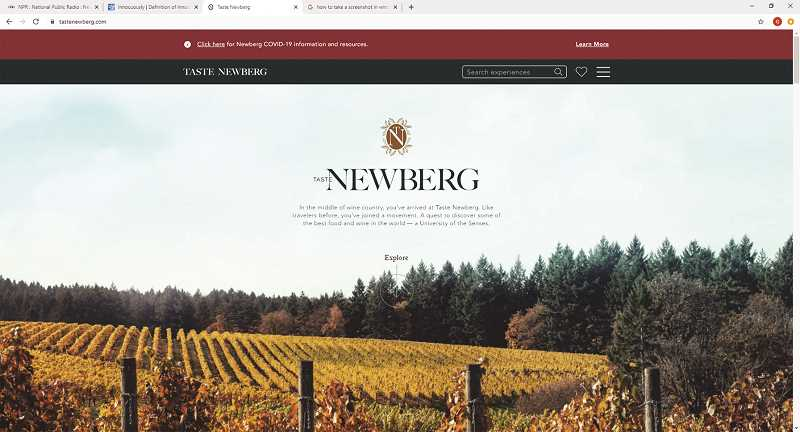 COURTESY PHOTO: TASTE NEWBERG - Taste Newberg, a nonprofit destination marketing organization chartered by the Newberg City Council in 2018 and formerly called Visit Newberg, has launched a colorful online presence aimed at grabbing attention.