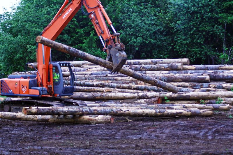 COURTESY PHOTO - Logs are moved during the final phase of the Suter Creek Fish Habitat Restoration project.