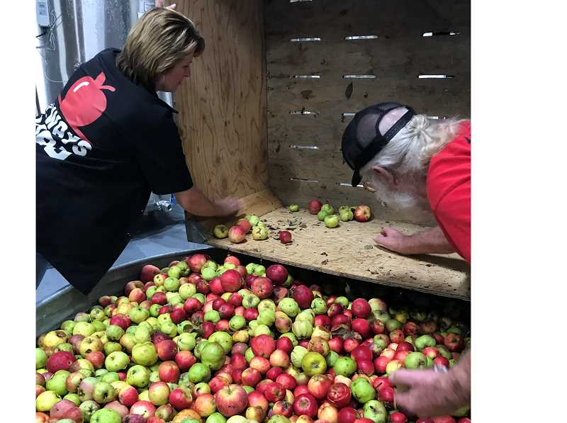 COURTESY PHOTO - Portland Cider Co. co-owner Lynda Parrish cleans apples with her father-in-law Steve Parrish.