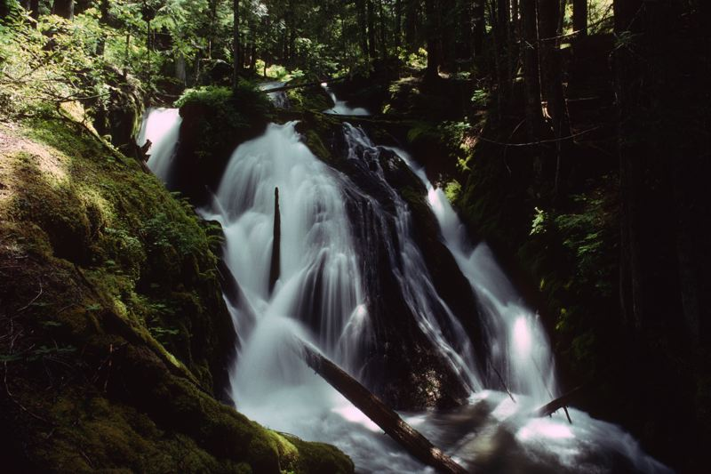 COURTESY PHOTO: U.S. FOREST SERVICE - PACIFIC NORTHWEST REGION - The Little Zigzag Falls Trail is about a mile round trip and ends with scenic views of the falls.