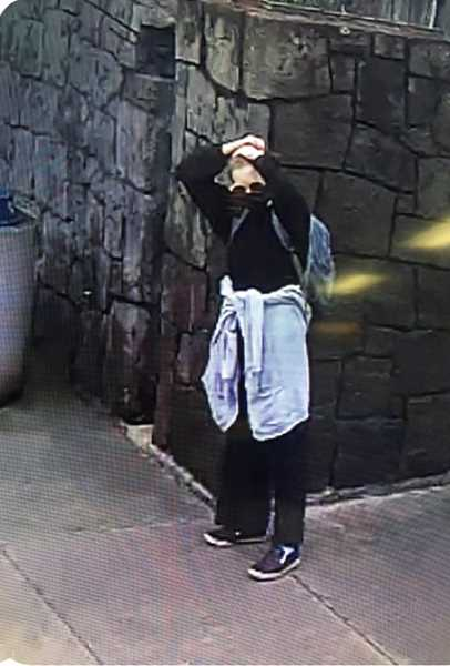 COURTESY OF TRIMET - Emmeline Tesch, shown here in MAX train security camera footage, did not return home after she told her mother she was walking to a park near her home in Beaverton Friday, July 24.