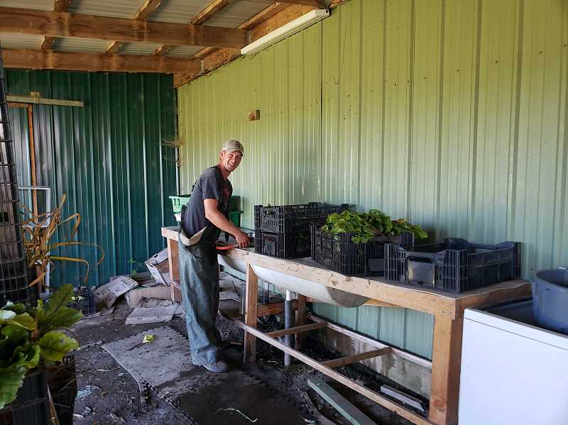 COURTESY PHOTO: MITCH TAYLOR - Black Dirt Farm's Eric Hvidsten washes fresh beets for delivery to the Centro Cultural Food Bank in Cornelius.