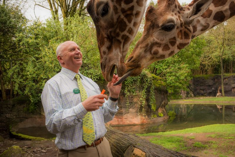 COURTESY PHOTO: MICHAEL DURHAM/OREGON ZOO - Oregon Zoo Director Don Moore plans to retire in late August. He will stay on to help the Zoo Foundation with fundraising.