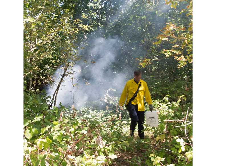 COURTESY PHOTO: PAM DENHAM - Clackamas firefighters put out brush fires on Sept. 1 in transient encampments on Milwaukie's Elk Rock Island.