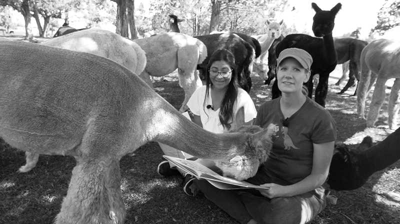 COURTESY PHOTO: JEFFERSON COUNTY LIBRARY - Adriana Arizmendi, left, and Laura Jones read a book with alpacas during an episode of Librarians on the Loose at Crescent Moon Ranch.