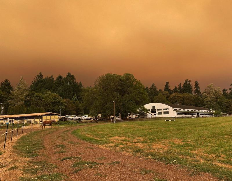 COURTESY PHOTO: LAKE OSWEGO HUNT - Lake Oswego Hunt took in 40 horses and many displaced families due to the fires.