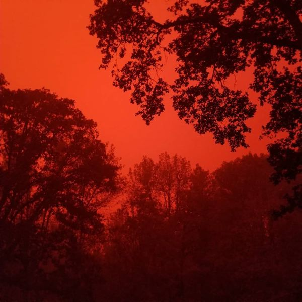 COURTESY PHOTO: JENNIFER SATTER - Only the silhouettes of the trees are visible in Molalla through the smoke against the red skies Wednesday, Sept. 9., Molalla Pioneer - News Though the city is split between level 2 and level 3 evacuation statuses, some are leaving anyway Molalla residents flee fires