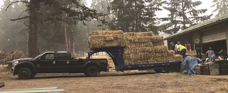 COURTESY PHOTO: AMY PIKE - Volunteers load up some hay for a run to drop off supplies where evacuated horses and other livestock were being housed. The group delivered feed, bedding and other essentials to evacuated animals from Canby, Molalla, Colton, Silverton and many other places.
