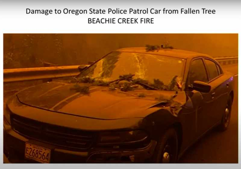 COURTESY PHOTO: MARION COUNTY - An Oregon State Police patrol car was hit by a falling tree as it traveled through the Highway 22 corridor compromised by fire.