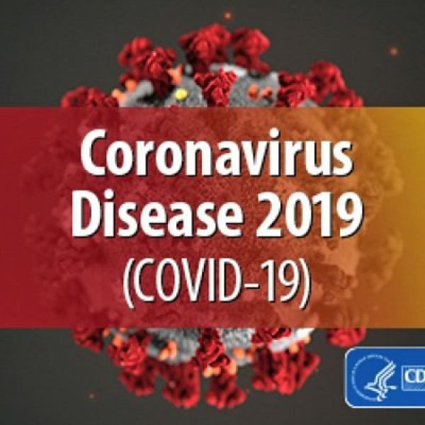 COVID-19 cases down, deaths up