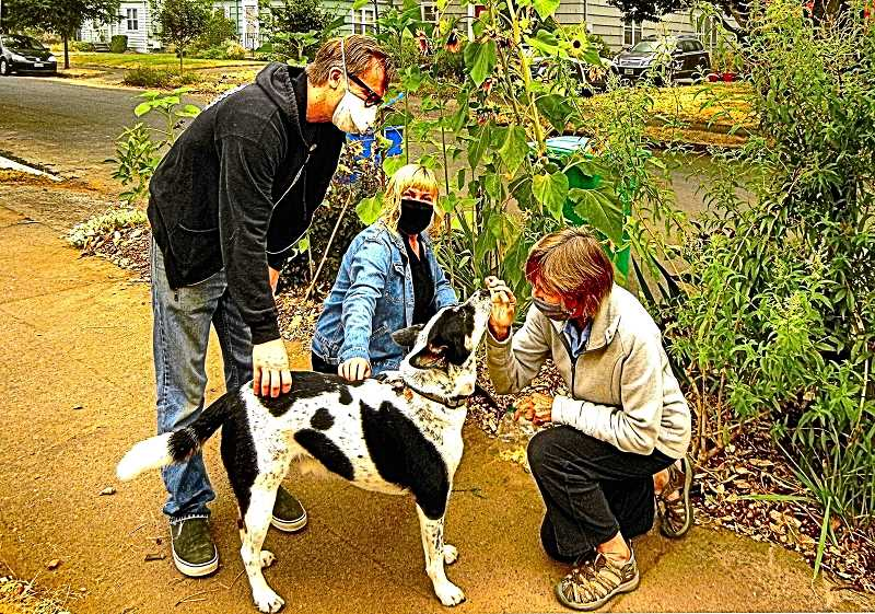 ELIZABETH USSHER GROFF - Woodstock residents Mike and Emily Ulysses, and their 5-year-old blue heeler Tycho, exchange a friendly greeting with neighbor Suzanne Johnson (right), who is looking to adopt her own heeler.
