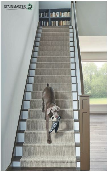 A stair runner can give pets much needed traction as they walk up and down steps.
