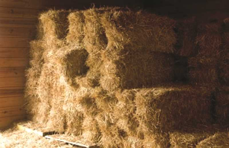 Hay distribution program to help with wildfire loss