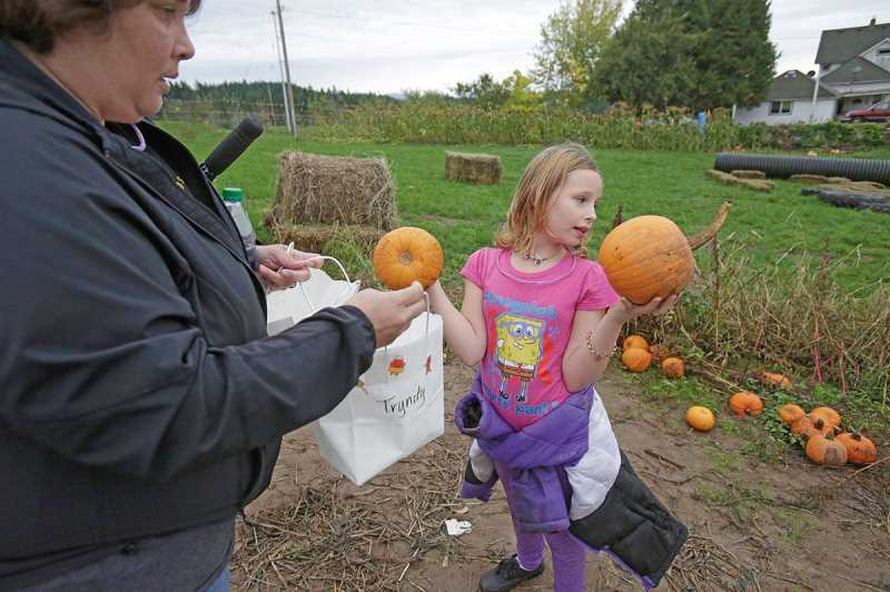 PMG FILE PHOTO - People looking for pumpkins at Plumper Pumpkin Patch in 2014. This year, farm owners are asking people to not touch multiple pumpkins due to the coronavirus pandemic.