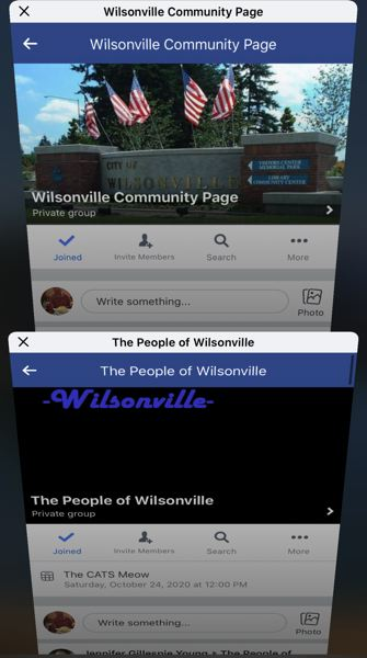 SCREENSHOT - Much political discourse takes place on both The People of Wilsonville and Wilsonville Community Page.