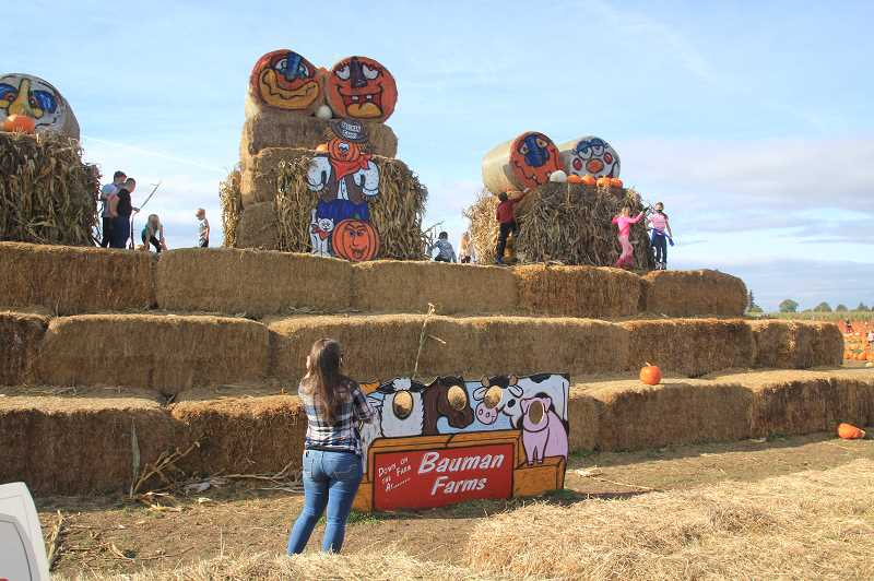 PMG PHOTO: JUSTIN MUCH - Bauman's Farm and Garden in Gervais is keeping as much activity available as possible, including its pumpkin patch and corn maze, during the cornavirus-tainted 2020 autumnal season.