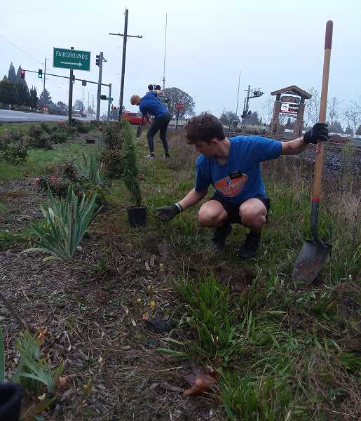 COURTESY PHOTO? CATHY RAE SMITH - Out for a jog, missionaries from The Church of Jesus Christ of Latter-day Saints helped the Canby Area Beautification group with a planting project on Saturday.