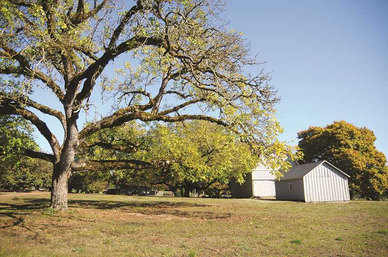 PMG FILE PHOTO - The Chehalem Park and Recreation District will reveal a plan on Nov. 19 and Dec. 3 for the Sander Estate in Dundee.