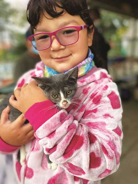 COURTESY PHOTO: HAZEL'S HOUSE - As its final socially distant get-together of the year, Hazel's House Cat Rescue is hosting a holiday event Dec. 12 for cat lovers from around the Chehalem Valley.