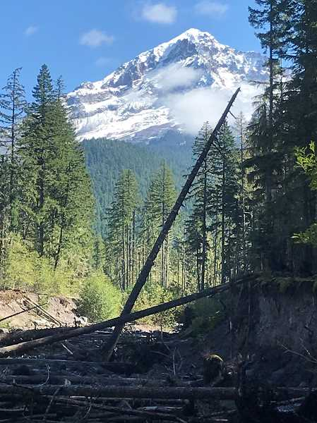 (Image is Clickable Link) Mt. Hood Trail