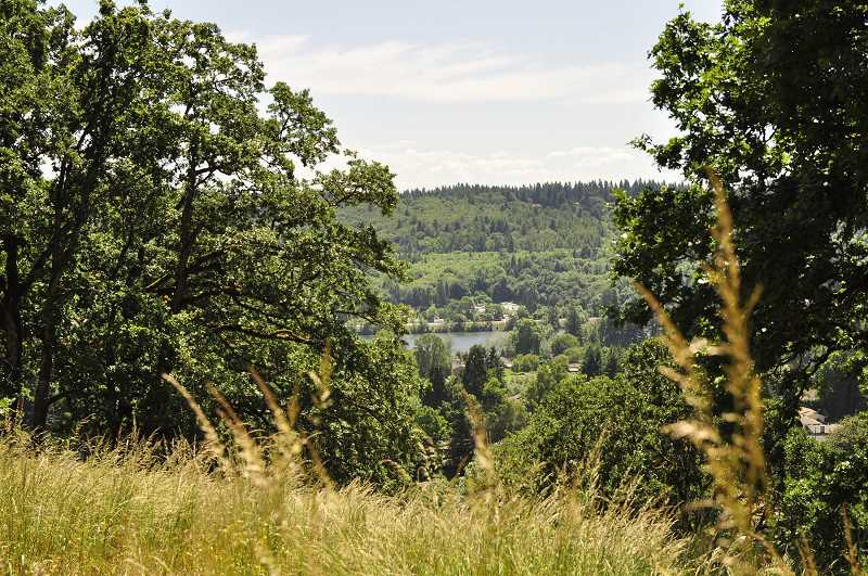 PMG FILE PHOTO - The West Linn City Council recently decided to move forward with a commemorative plaque and nature play area at the White Oak Savanna.