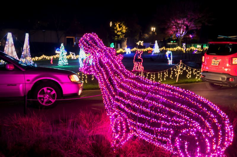 COURTESY PHOTO: MICHAEL DURHAM/OREGON ZOO - More than 1.5 million brightly colored lights transform the Oregon Zoo into a winter wonderland during ZooLights, which has been turned into a drive-thru event.