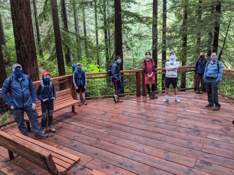 COURTESY PHOTO: TED STONECLIFFE - The scouts visited Wildwood Trail in Washington Park's Hoyt Arboretum