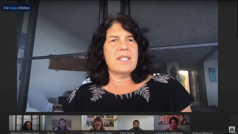 SCREENSHOT - Multnomah County Commissioner Sharon Meieran appeared at a Nov. 19 meeting of the county board from a condo on the Big Island of Hawaii.