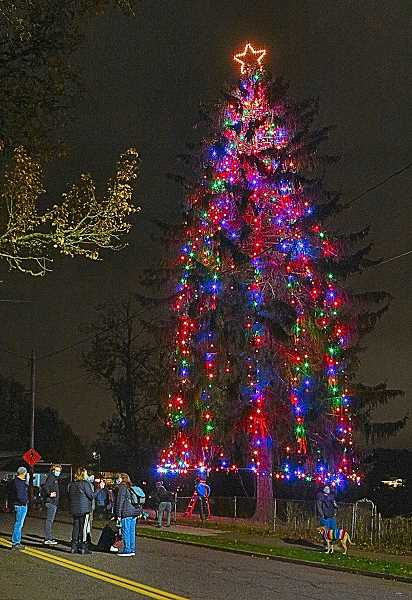 DAVID F. ASHTON - Neighbors on S.E. 13th Avenue, on the Bybee Curve, applauded their approval - as the SMILE Christmas Tree was lit for the first time this year.